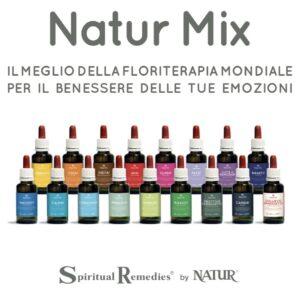 Naturmix