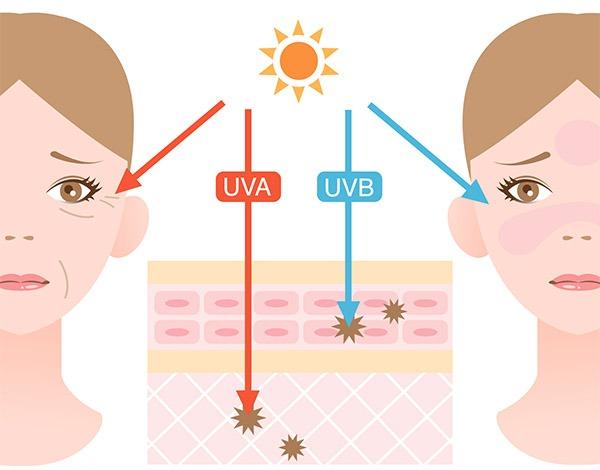 raggi UVA e UVB causano il fotoinvecchiamento